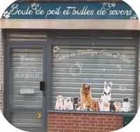 boule_de_poil.jpg