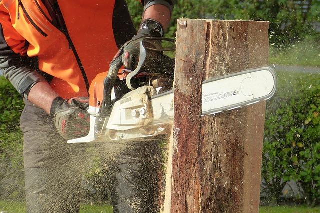 wood-1728019_640.jpg